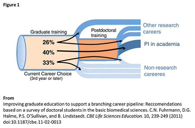 black_hole_scientic_career_fig1_644