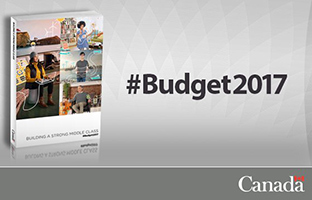 Budget 2017 highlights innovation and skills, but adds no new funds for basic research