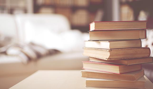 Why campus novels matter