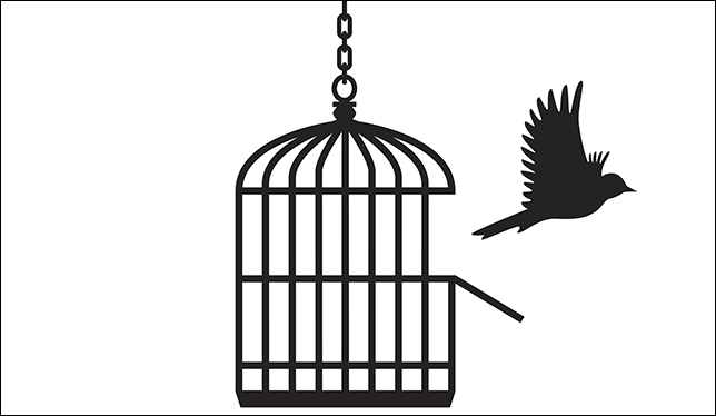 Middle Eastern studies, Greta Thunberg and institutional autonomy