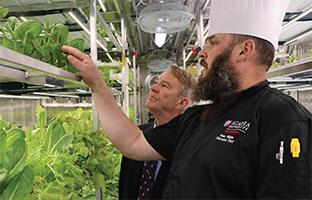 Acadia thinks inside the box on food sustainability solution